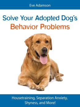 Solve Your Adopted Dog's Behavior Problems: Housetraining, Separation Anxiety, Shyness, and More!