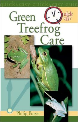 Quick & Easy Green Treefrog Care