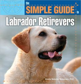 The Simple Guide to Labrador Retrievers