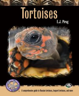 Tortoises: A Comprehensive Guide to Russian Tortoises, Leopard Tortoises, and more