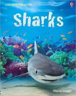 Sharks (Usborne Discovery Series)