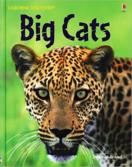 Big Cats (Usborne Discovery Internet-Linked Series)
