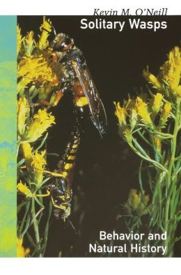 Solitary Wasps: Behavior and Natural History
