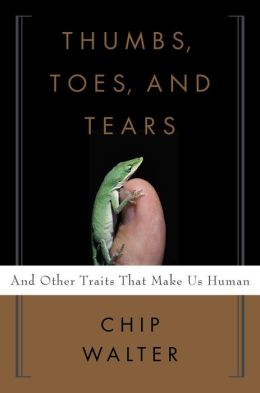 Thumbs, Toes, and Tears: And Other Traits That Make Us Human