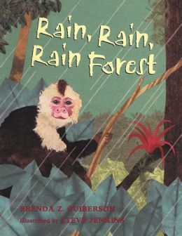 Rain Rain Rainforest