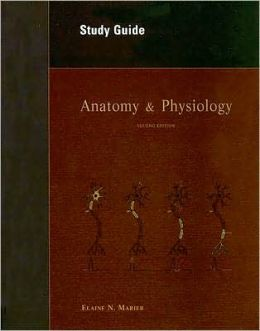 Anatomy and Physiology - Study Guide