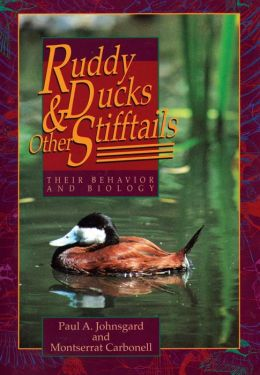 Ruddy Ducks and Other Stifftails: Their Behavior and Biology