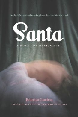 Santa: A Novel of Mexico City