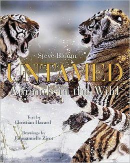 Untamed : Animals in the Wild