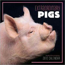 2012 EXTRAORDINARY PIGS WALL CALENDAR