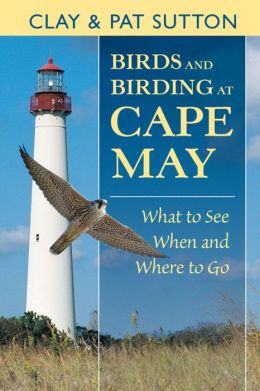 Birds and Birding at Cape May: What to See and When and Where to Go