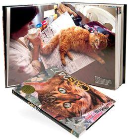 Cats 24/7: Extraordinary Photographs of Wonderful Cats