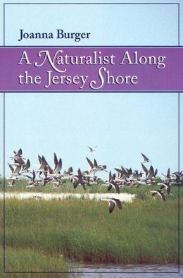 A Naturalist along the Jersey Shore