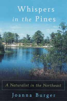 Whispers in the Pines: A Naturalist in the Northeast