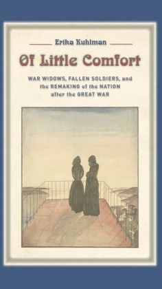 Of Little Comfort: War Widows, Fallen Soldiers, and the Remaking of the Nation after the Great War