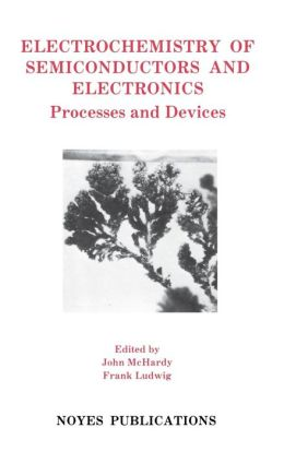 Electrochemistry of Semiconductors and Electronics: Processes and Devices