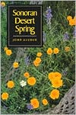 Sonoran Desert Spring