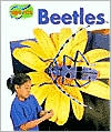 Beetles (Minipets Series)