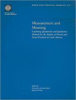 Measurement and Meaning: Combining Quantitative and Qualitative Methods for the Analysis of Poverty and Social Exclusion in Latin America