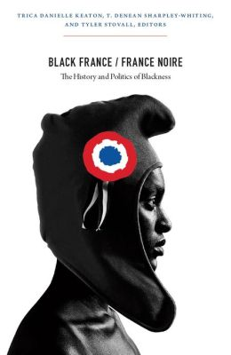 Black France / France Noire: The History and Politics of Blackness
