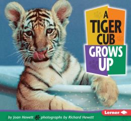 A Tiger Cub Grows Up (Baby Animals Series)