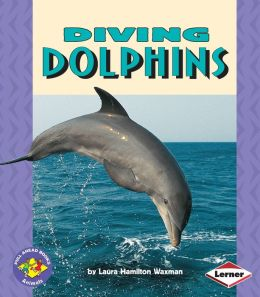 Diving Dolphins