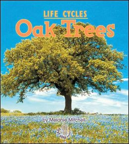 Oak Trees (First Step Nonfiction - Life Cycles Series)