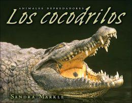 Los cocodrilos (Crocodiles)