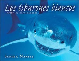 Los tiburones blancos (Great White Sharks)