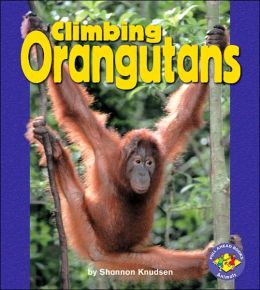 Climbing Orangutans