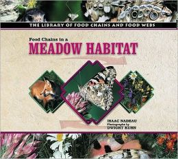 Food Chains in a Meadow Habitat