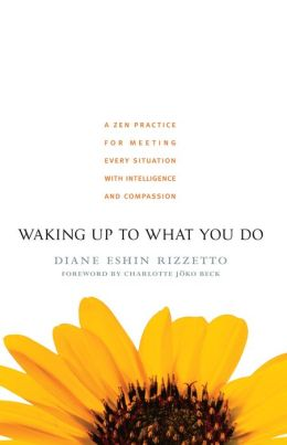 Waking Up to What You Do: A Zen Practice for Meeting Every Situation with Intelligence and Compassion
