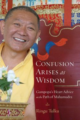 Confusion Arises as Wisdom: Gampopa?s Heart Advice on the Path of Mahamudra