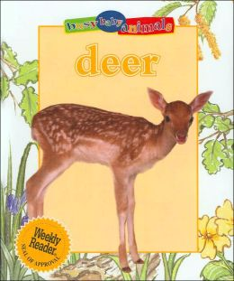 Deer (Busy Baby Animals Series)