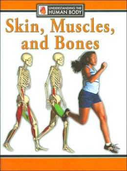 Skin, Muscles, and Bones (Understanding the Human Body Series)
