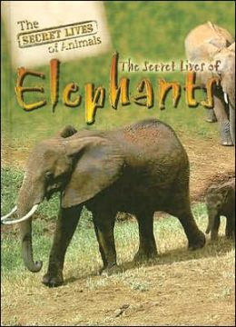 The Secret Lives of Elephants