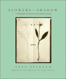 Flowers in Shadow: The Photographic Rediscovery of a Victorian Botanical Journal