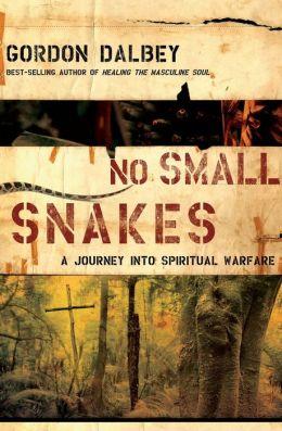 No Small Snakes: A Journey into Spiritual Warfare