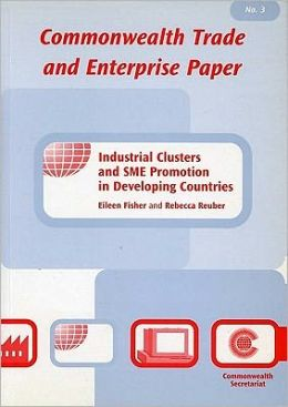 Industrial Clusters and SME Promotion in Developing Countries: Number 3