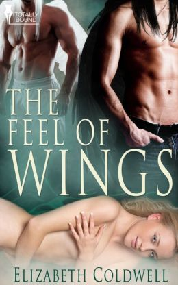 The Feel of Wings