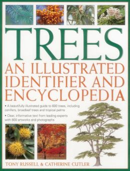 Trees: An Illustrated Identifier And Encyclopedia: A Beautifully Illustrated Guide To 600 Trees, Including Conifers, Broadleaf Trees And Tropical Palms