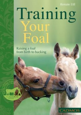 Training Your Foal: Raising a Foal From Birth to Backing