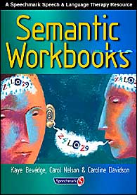 Semantic Workbooks