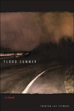 Flood Summer: A Novel