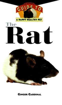 Rat: An Owner's Guide to a Happy Healthy Pet