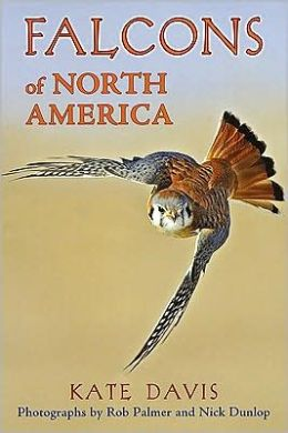 Falcons of North America