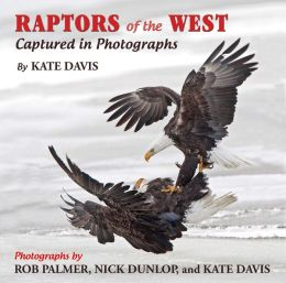 Raptors of the West: Captured in Photographs