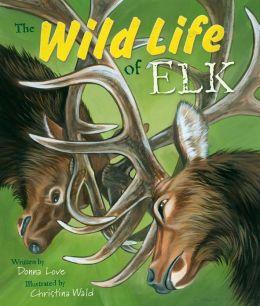 The Wild Life of Elk