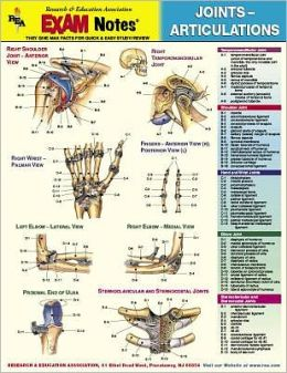 Joints-Articulations