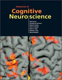 Principles of Cognitive Neuroscience